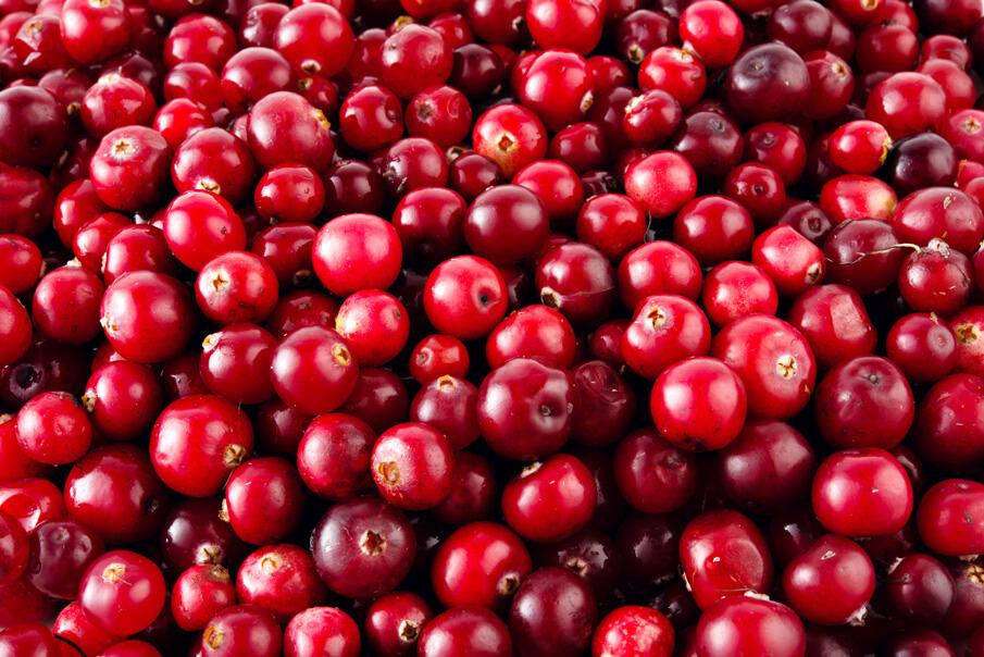 gesundheit-wohlbefinden-cranberry-eine-wunderbeere-fuer-die-gesundheit-die-ganze-wahrheit-ueber-amerikas-beliebteste-beere
