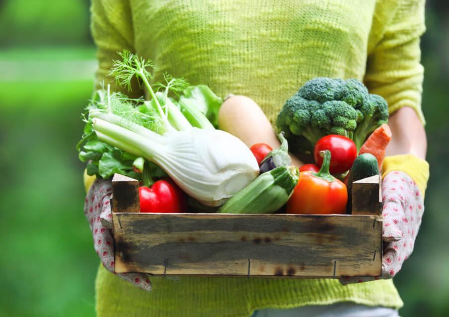 gesundheit-wohlbefinden-vegane-ernaehrung