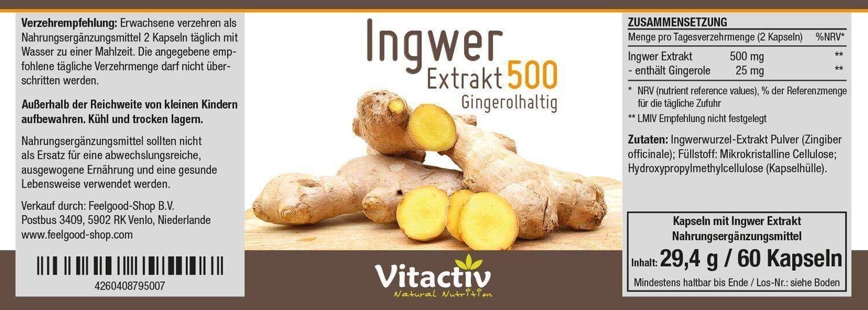 INGWER Extrakt 500