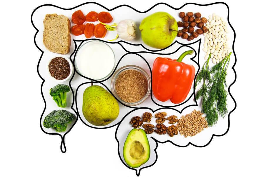 gesundheit-wohlbefinden-darmflora-aufbauen-nuetzliche-helfer-im-darm